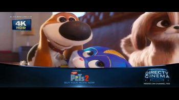 DIRECTV Cinema TV Spot, 'The Secret Life of Pets 2' - Thumbnail 8