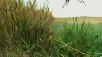 South Dakota Department of Tourism TV Spot, 'Pheasant Hunting' - Thumbnail 3