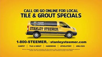 Stanley Steemer TV Spot, 'Toby Tile: No Offer' - Thumbnail 9