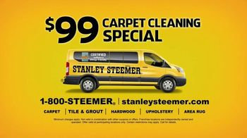 Stanley Steemer Carpet Cleaning Special TV Spot, 'Baby Spitup' - Thumbnail 8