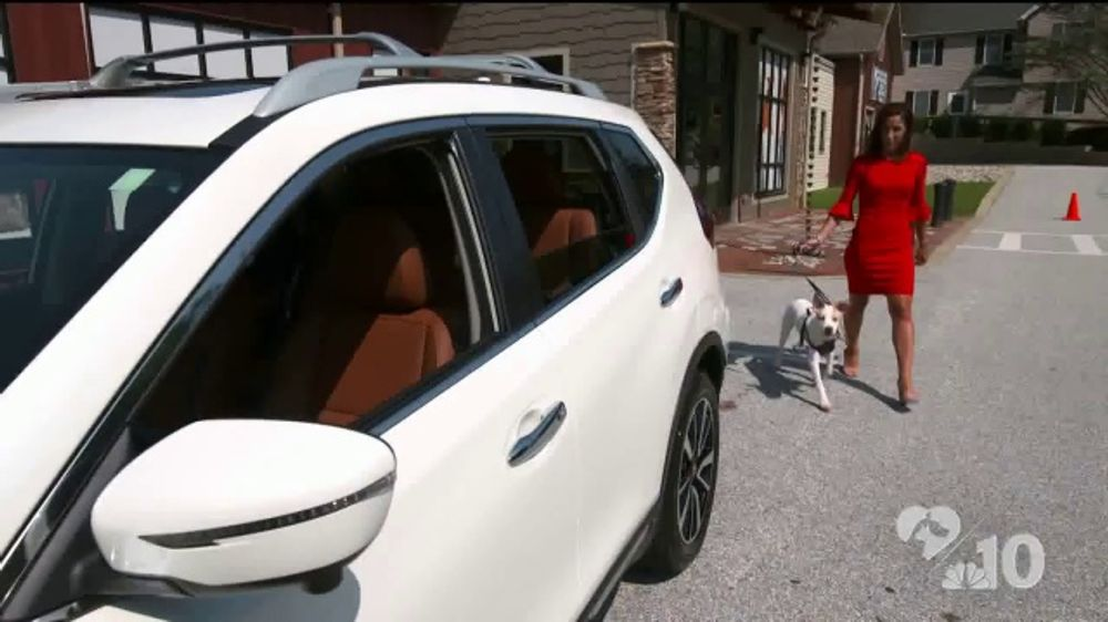 Clear the Shelters TV Commercial, 'Bring Home Your New Best Friend: 2019 Nissan Rogue'