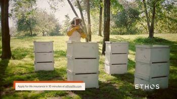 Ethos TV Spot, 'Bees'