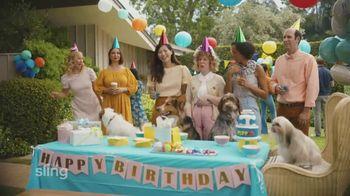 Sling TV Spot, 'Dog Birthday Party' Featuring Maya Rudolph - Thumbnail 3