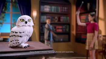Harry Potter Hedwig Interactive Creature TV Spot, 'Harry's Loyal Companion' - 362 commercial airings