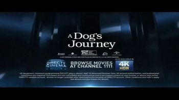 DIRECTV Cinema TV Spot, 'A Dog's Journey' Song by Colbie Caillat - Thumbnail 8