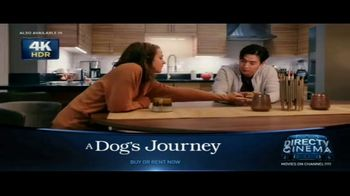DIRECTV Cinema TV Spot, 'A Dog's Journey' Song by Colbie Caillat - Thumbnail 5