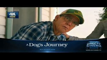 DIRECTV Cinema TV Spot, 'A Dog's Journey' Song by Colbie Caillat - Thumbnail 6