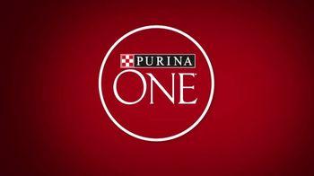Purina ONE TV Spot, 'Digestive Health Formula'