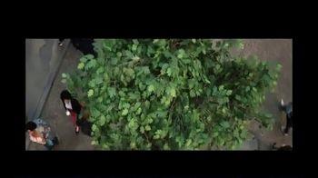 Invesco TV Spot, 'Under This Tree' - Thumbnail 10