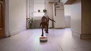 The Farmer's Dog TV Spot, 'What Real Food Looks Like: 50 Percent' - Thumbnail 6