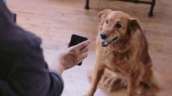 Brandless TV Spot, 'What We're About' - Thumbnail 9