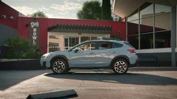 Subaru TV Spot,  'Dog Tested: Drive Away: Complimentary Maintenance' [T2] - Thumbnail 2