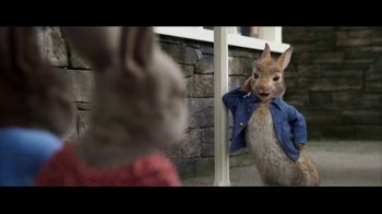 Peter Rabbit 2: The Runaway - 899 commercial airings