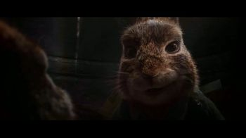 Peter Rabbit 2: The Runaway - Thumbnail 7