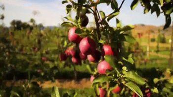 Okanogan Country TV Spot, 'Craving For Adventure' - Thumbnail 5