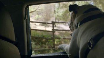 Hyundai TV Spot, 'Something For Everyone' [T1] - Thumbnail 4