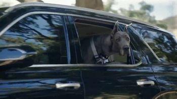 Hyundai TV Spot, 'Something For Everyone' [T1] - Thumbnail 8