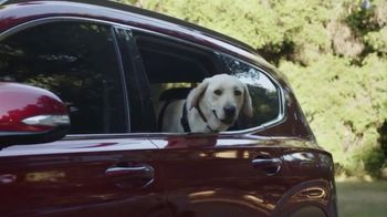 Hyundai TV Spot, 'Something For Everyone' [T1] - Thumbnail 9