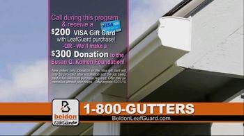 Beldon LeafGuard TV Spot, 'Breast Cancer Awareness Donation' - Thumbnail 7