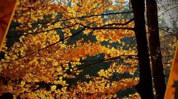 Beldon LeafGuard TV Spot, 'Beautiful Leaves' - Thumbnail 1
