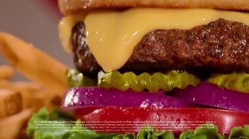 TGI Friday's $5 Cheeseburger and Fries TV Spot, 'Hungry for Unity' - Thumbnail 8