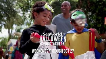 SeaWorld Halloween Spooktacular TV Spot, 'What Does Real Feel Like?'