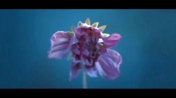 Microsoft Surface TV Spot, 'Una visión' canción de Minnie Riperton [Spanish] - Thumbnail 6