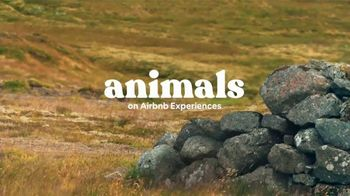 Airbnb Experiences TV Spot, 'Introducing Animals' Song by Doris Day - Thumbnail 10