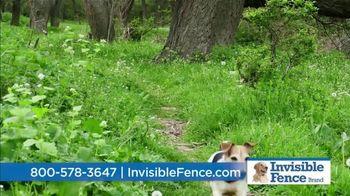 Invisible Fence TV Spot, 'Sound Snapshot: Animals' - Thumbnail 7