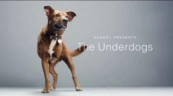 Subaru TV Spot, 'The Underdogs' [T1] - Thumbnail 5
