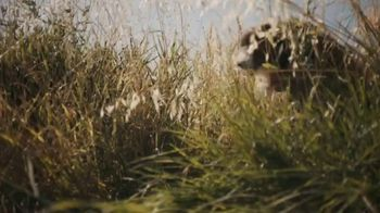 Volvo XC90 TV Spot, 'A Dog's Journey' [T1] - Thumbnail 4