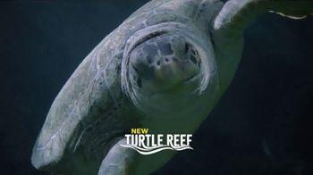 SeaWorld San Antonio Summer Sale TV Spot, 'What Does Real Feel Like?'