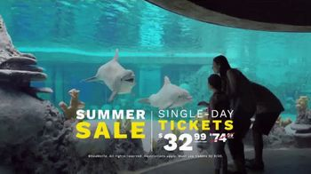 SeaWorld San Antonio Summer Sale TV Spot, 'What Does Real Feel Like?' - Thumbnail 8