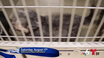 Clear the Shelters TV Spot, 'NBC 6 Miami: Bring a Best Friend Home' - Thumbnail 3