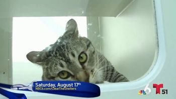 Clear the Shelters TV Spot, 'NBC 6 Miami: Bring a Best Friend Home' - Thumbnail 5