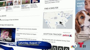 Clear the Shelters TV Spot, 'NBC 6 Miami: Bring a Best Friend Home' - Thumbnail 7