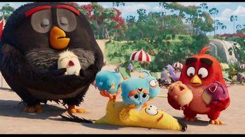 The Angry Birds Movie 2 - Alternate Trailer 27