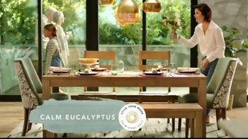 Pier 1 Imports TV Spot, 'Set the Table With Calming Eucalyptus!' - Thumbnail 3