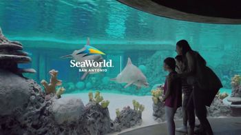 SeaWorld San Antonio Summer Sale TV Spot, 'Thrilling' - Thumbnail 8