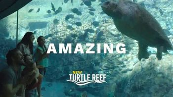 SeaWorld San Antonio Summer Sale TV Spot, 'Thrilling' - Thumbnail 4