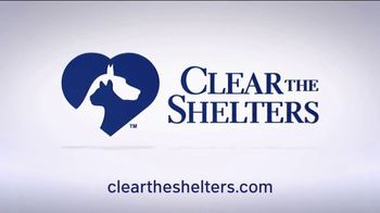 Clear the Shelters TV Spot, 'NBC 4 DC: All Shapes & Sizes' - Thumbnail 10