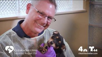 Clear the Shelters TV Spot, 'NBC 4 DC: All Shapes & Sizes' - Thumbnail 2