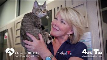 Clear the Shelters TV Spot, 'NBC 4 DC: All Shapes & Sizes' - Thumbnail 3