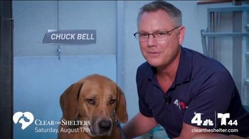 Clear the Shelters TV Spot, 'NBC 4 DC: All Shapes & Sizes' - Thumbnail 4
