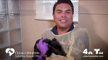 Clear the Shelters TV Spot, 'NBC 4 DC: All Shapes & Sizes' - Thumbnail 5