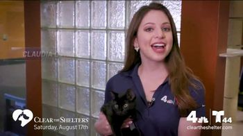 Clear the Shelters TV Spot, 'NBC 4 DC: All Shapes & Sizes' - Thumbnail 6