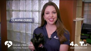 Clear the Shelters TV Spot, 'NBC 4 DC: All Shapes & Sizes' - Thumbnail 7