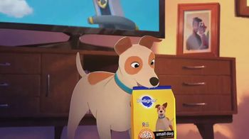 Pedigree Small Dog Complete Nutrition TV Spot, 'Paw Patrol: Pup Hero Adventures'