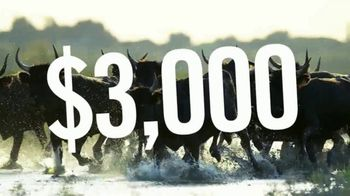 Mahindra Summer Sale TV Spot, 'Stampede: 2018 ROXOR Cash' - Thumbnail 2