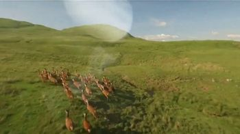 National Forest Foundation TV Spot, 'One of Us' - Thumbnail 5